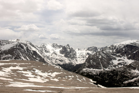 Trail Ridge 4