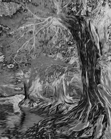 Medina River Fun (Black and White) - ArtLifting