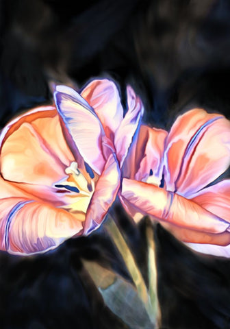 Peach Flowers - ArtLifting