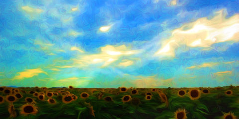 Sunflower Field - ArtLifting