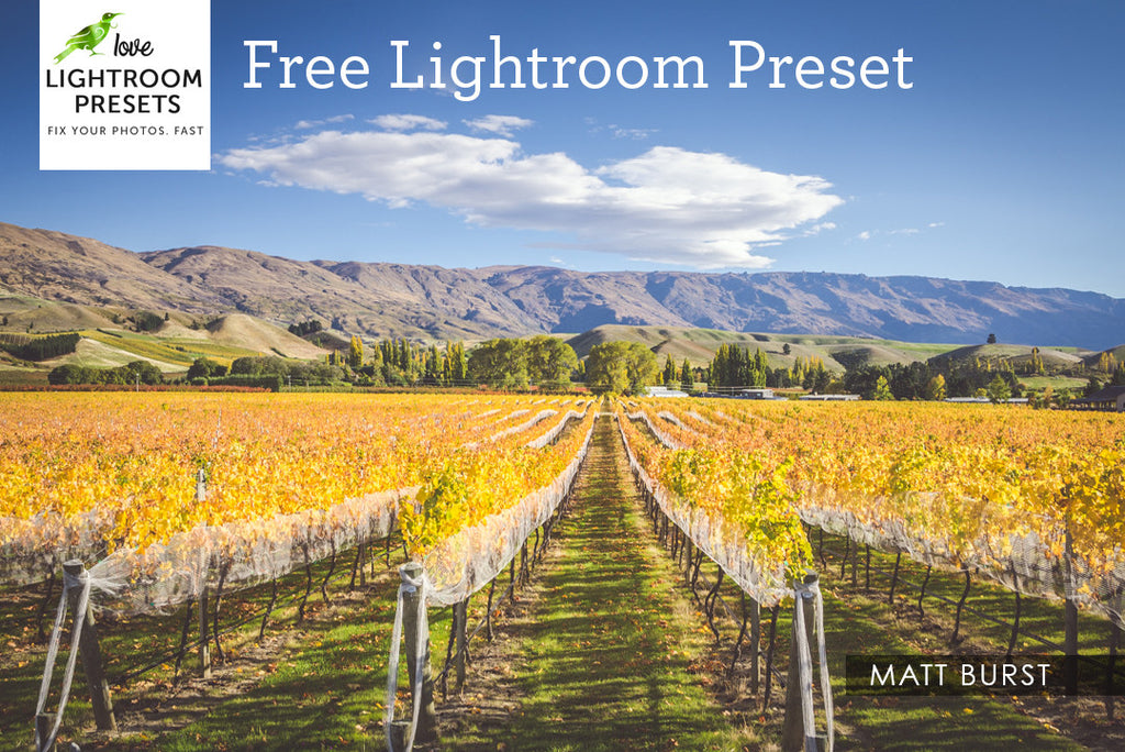 Free Lightroom Preset | Matte Burst, For Landscape & Portraits