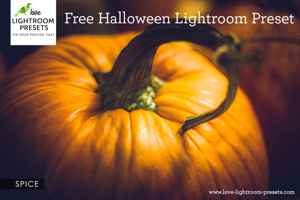 Free Lightroom Preset | Spice - A Halloween Delight