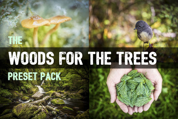 Woods for the Trees:  Lightroom Preset Pack