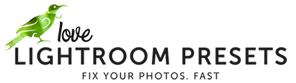 Love Lightroom Presets logo