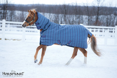 Rhino Pony All in One Heavy Weight Turnout Blanket