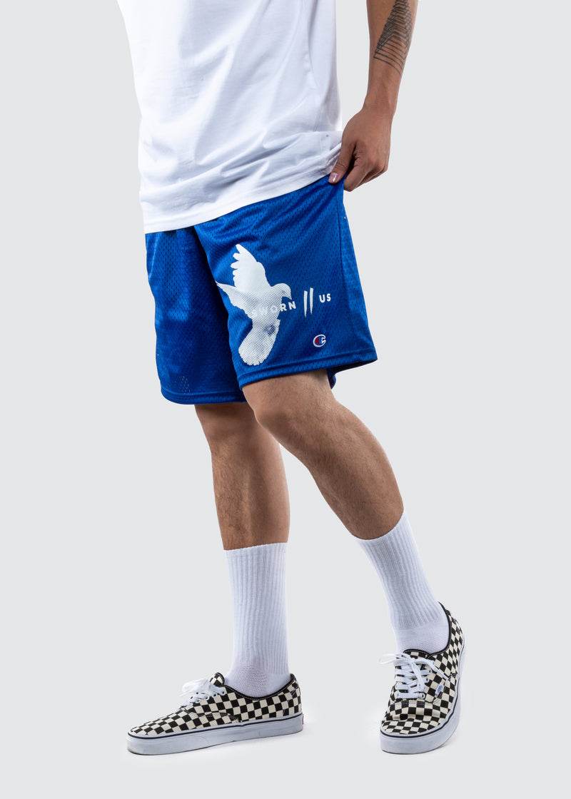 Champion Motion Court Shorts // Royal