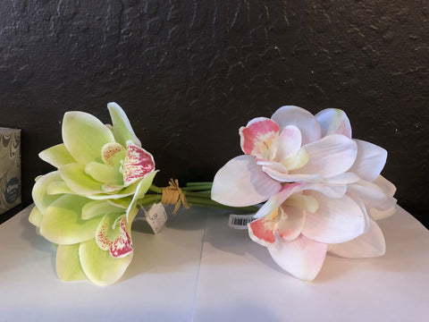 Orchid Bundle