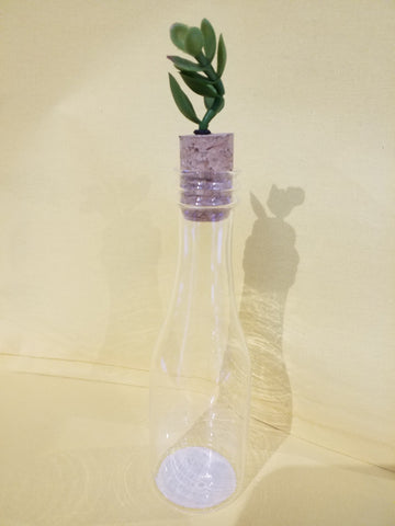 Glass Bottle with Succulent Topper