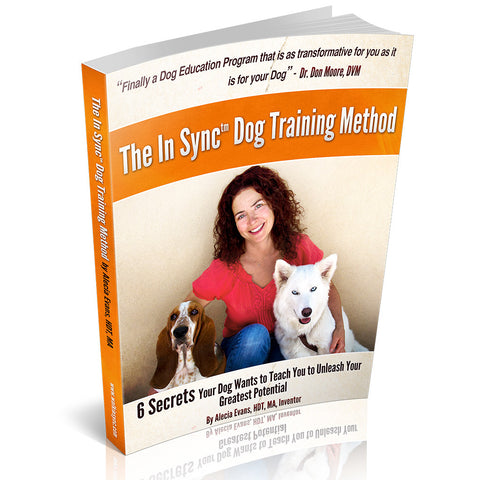 The In Sync™ Method Book