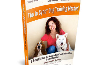 The In Sync Method Book