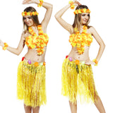 Hawaiian Grass Skirt Flower Hula Fancy Dress