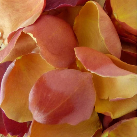 """Freeze dried African Sunset Confetti Petals"""
