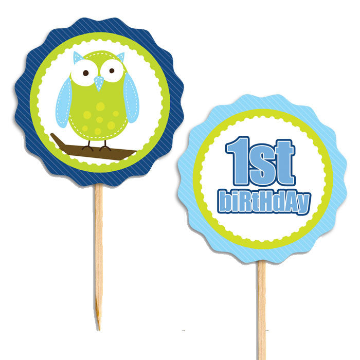 Outstanding 1St Birthday Owl Boy Food Picks Cupcake Toppers 28 Pieces Personalised Birthday Cards Sponlily Jamesorg