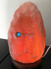 Pink Himalayan Salt Lamp - New Moon Beginnings - 1