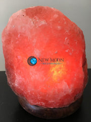 Pink Himalayan Salt Lamp - New Moon Beginnings - 7