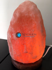 Pink Himalayan Salt Lamp - New Moon Beginnings - 2