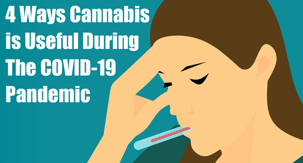 4-ways-cannabis-is-useful-during-the-covid-19-pandemic