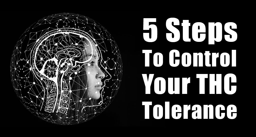 5-steps-to-control-your-thc-tolerance