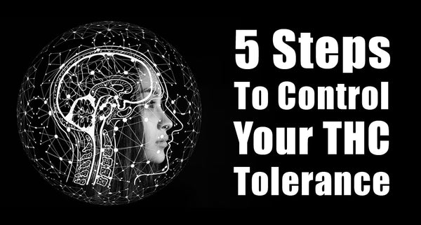 5 Steps To Control Your THC Tolerance