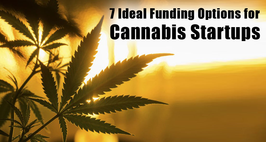 7-ideal-funding-cannabis-startups