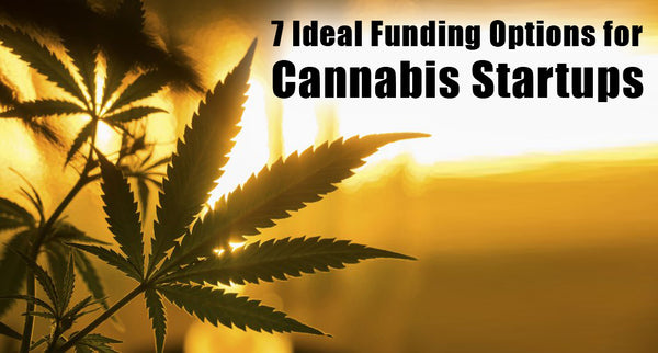 7 Ideal Funding Options for Cannabis Startups