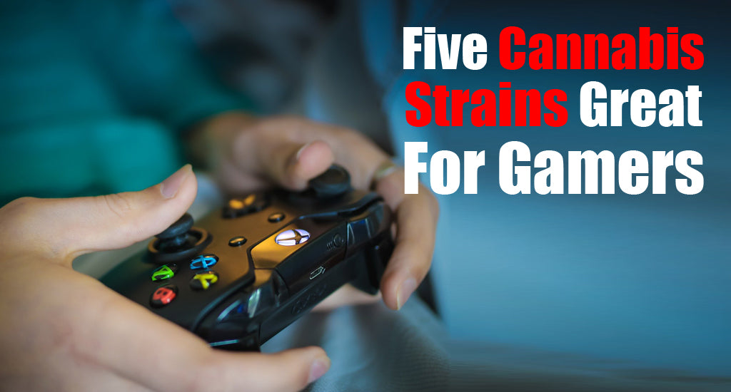 Five Cannabis Strains Great For Gamers