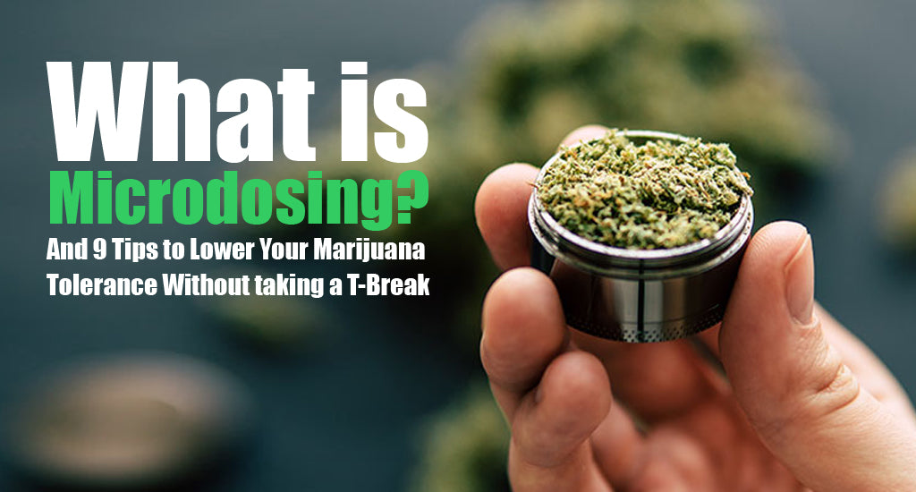 How-to-lower-weed-tolerance-without-quitting-How-to-reduce-weed-tolerance-without-break