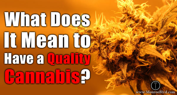 Marijuana Quality, 4 Factors to Look For