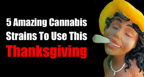 5 Amazing Cannabis Strains To Use This Thanksgiving