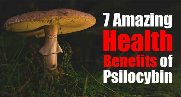 Top 7 Amazing Health Benefits of Psilocybin Mushrooms