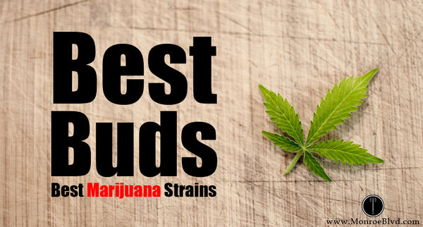 Best Marijuana Strains - Blue Dream is still on the top of the list!