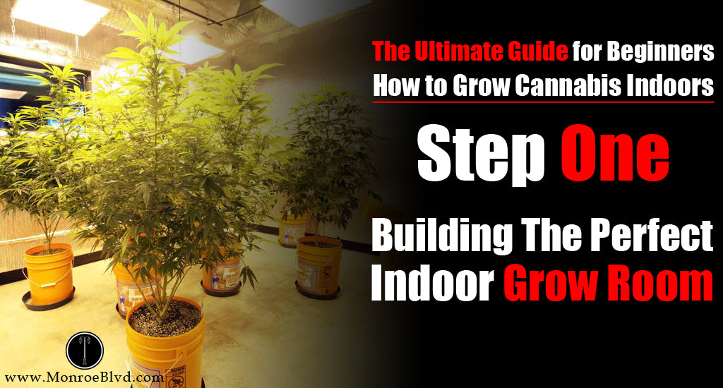 Step One How To Build The Perfect Indoor Grow Room For Up