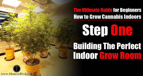 Step One: How to Build the Perfect Indoor Grow Room (For up to 6 Plants)