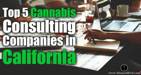 Top 5 cannabis consulting companies in California