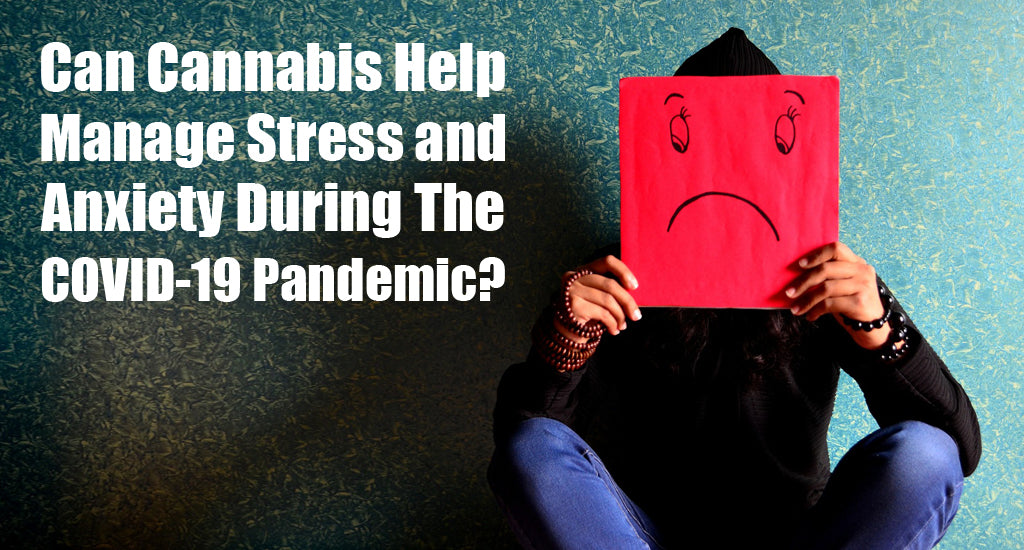 cannabis-manage-anxiety-for-covid-19