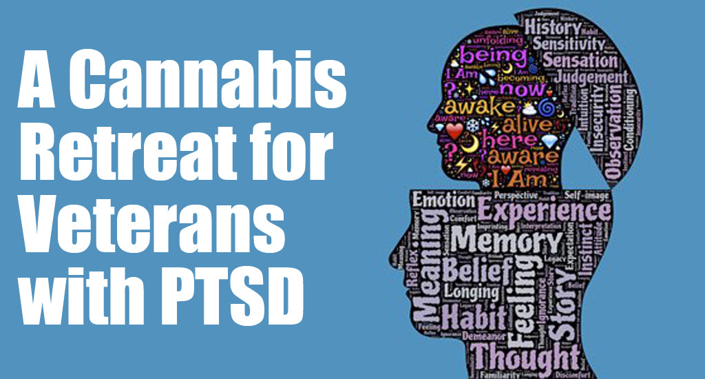 cannabis-retreat-for-veterans-with-ptsd
