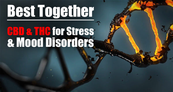 Best Together: CBD and THC for Stress and Mood Disorders