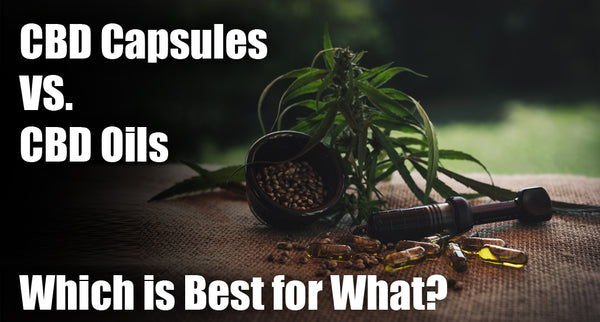 CBD Capsules vs CBD Oils: Which is Best for What?