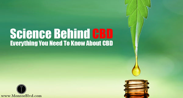 Cannabinoids 101- The Science Behind CBD - Everything You Need To Know About CBD
