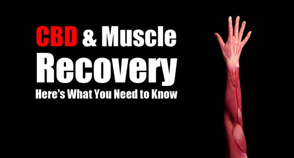 CBD and Muscle Recovery, Here's What You Need to Know