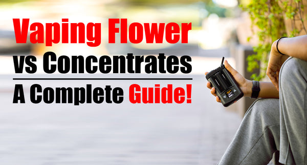 Vaping Flower vs Concentrates, a Complete Guide!