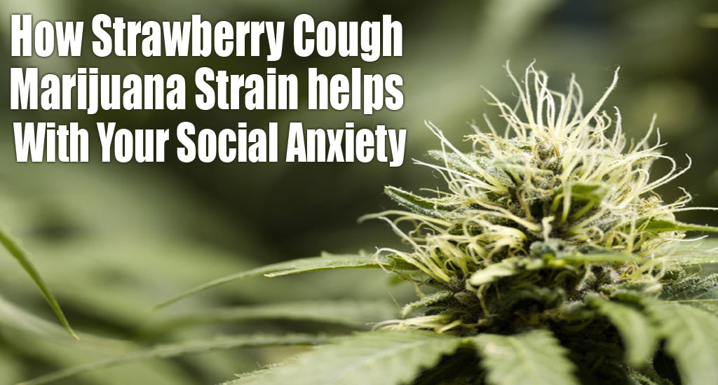 how-strawberry-cough-marijuana-strain-helps-in-social-anxiety