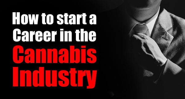 How to start a Career in the Cannabis Industry