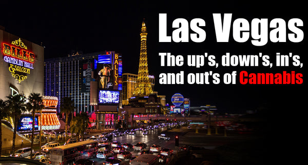 Las Vegas: The New Amsterdam Of The Future