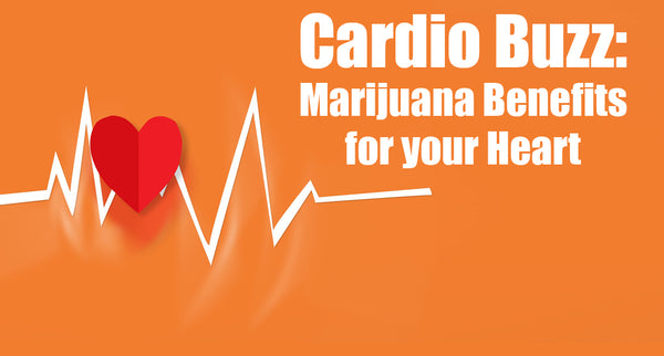 Cardio Buzz: Marijuana Benefits for your Heart