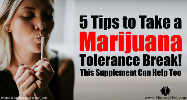 Marijuana Tolerance, Withdrawal Symptoms, and 5 Tips to Take a T-Break