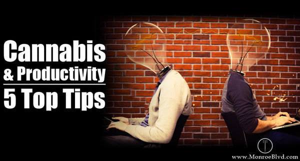 Marijuana for productivity - how to smoke weed and be productive? 5 Top Tips