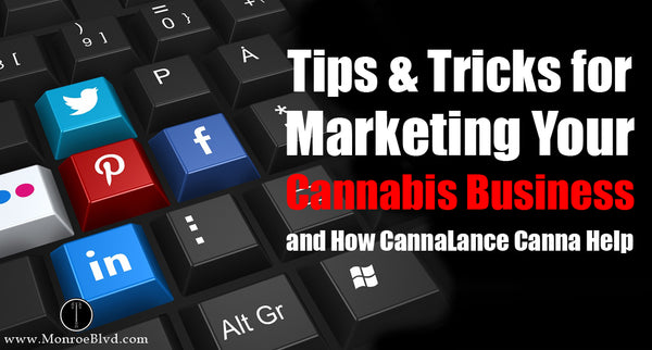 Cannabis Marketing in 2021: 9 Tips and Strategies to Succeed