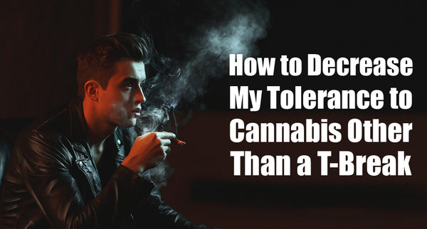 Can I do something to Decrease my tolerance to marijuana other than a Break?