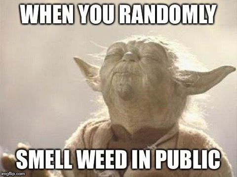 When you randomly smell weed in public